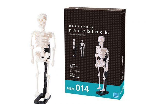 Nanoblock Mänskligt skelett bild